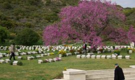 Private Gallipoli Tour From Istanbul
