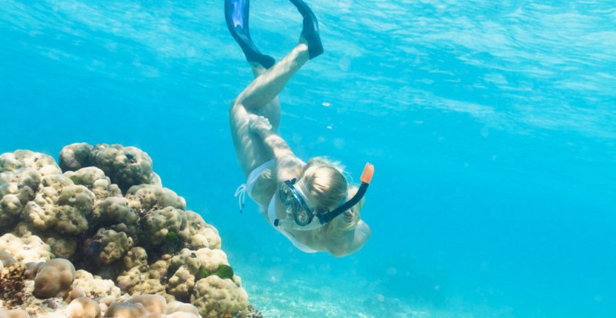 Snorkelling Tours in Gallipoli